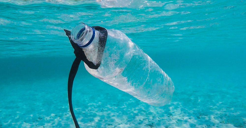 The Economics of Marine Plastic Pollution